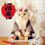 gatosushiman 150x150 Fotos de comida Curiosa. El sushi